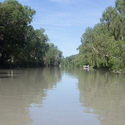 East Alligator River Photo