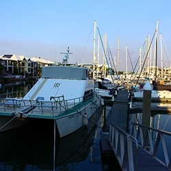 Tipperary Waters Marina, Darwin Photo
