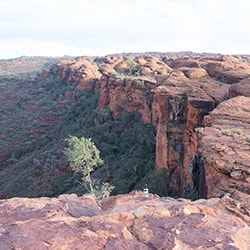 Kings Canyon Photo